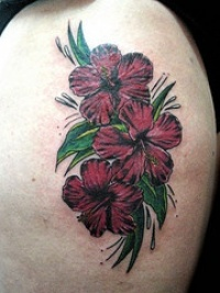 hibiskus tattoos seite 6. Black Bedroom Furniture Sets. Home Design Ideas