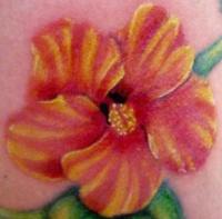 hibiskus tattoos seite 7. Black Bedroom Furniture Sets. Home Design Ideas